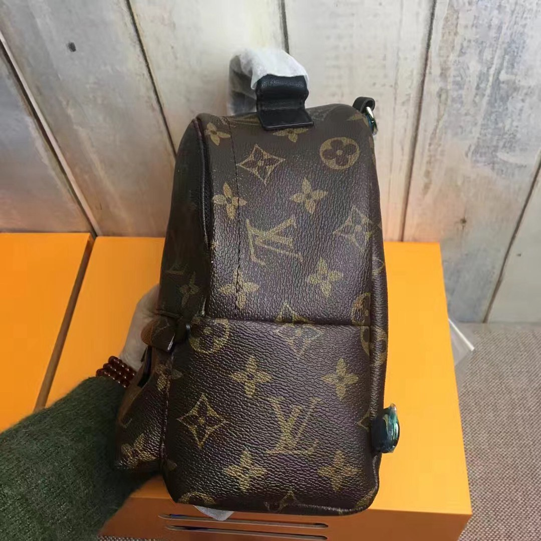 Сумка Palm Springs backpack mini Louis Vuitton 51065
